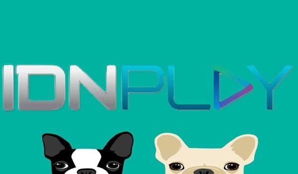 IDN Poker Online Manfaat Terselubung Dari Artikel